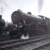 61641 Gayton Hall at Worksop 1954